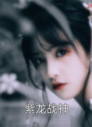 紫龙战神免费阅读-牛何写的小说
